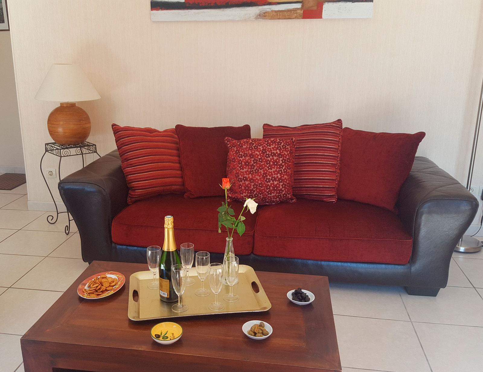 la-villa-aux-mimosas-le-salon-1